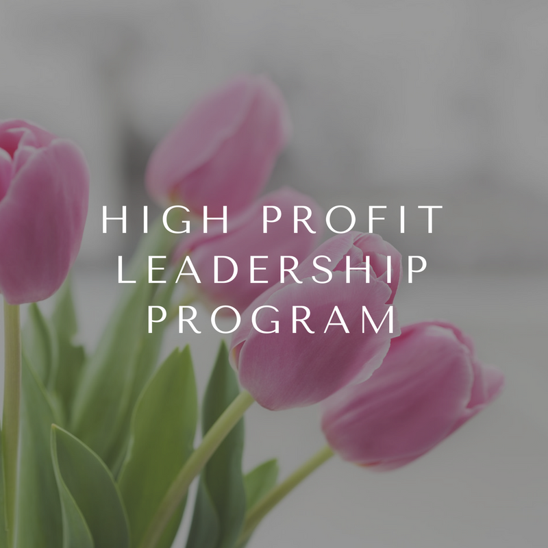 High Profit Leadership